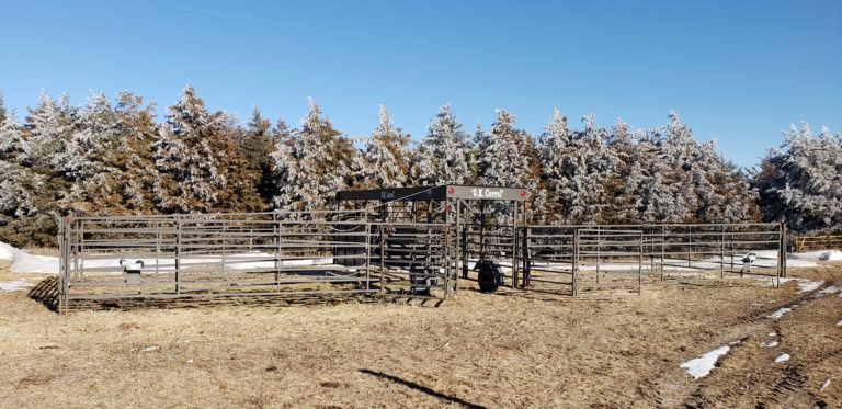 OK Corral sitting in front of some frosted trees