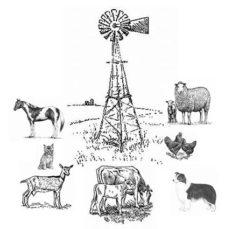 Logo for Ravenna Veterinary Clinic